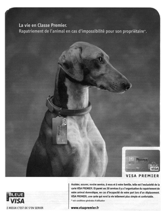 ChienVisa